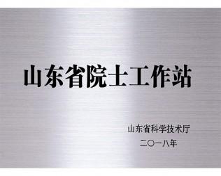山东省院士工作站